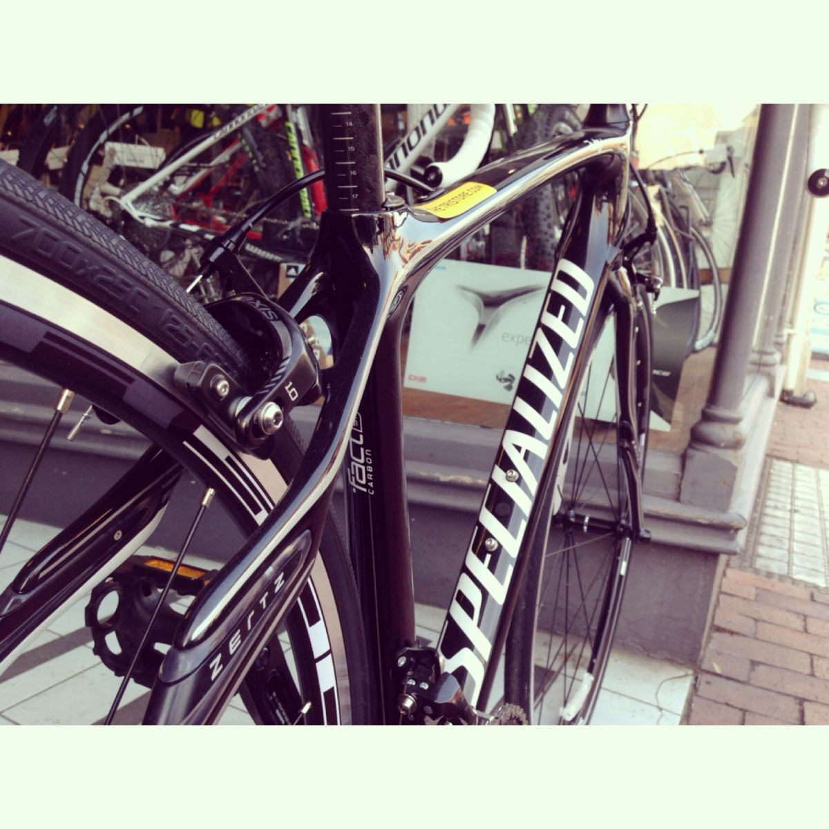Specialized Bikes at thetristore